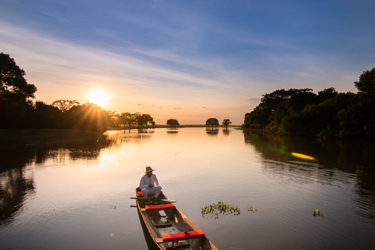 Explore the best of Wildlife in Colombia